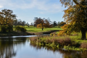 web_Rookery_Park_Holiday_Cottages_Suffolk_8701_600px